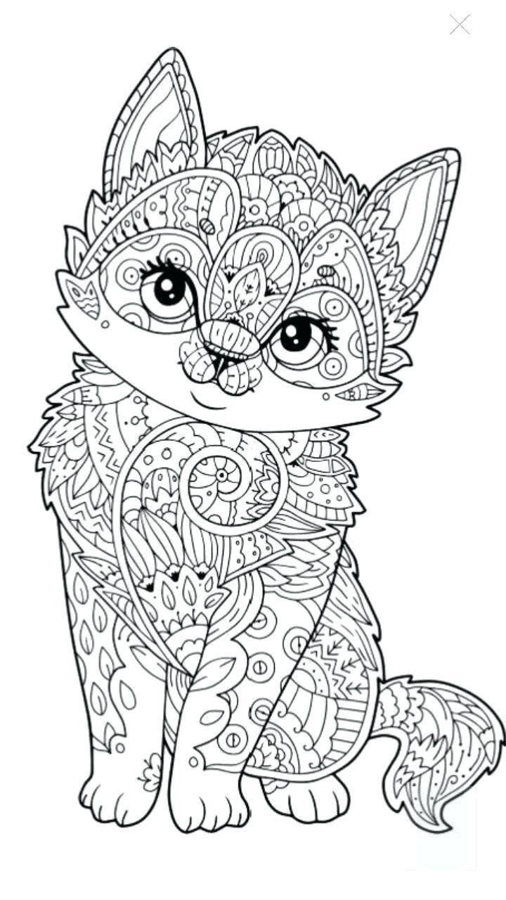 dibujos para colorear dificiles 11 gatito mandala