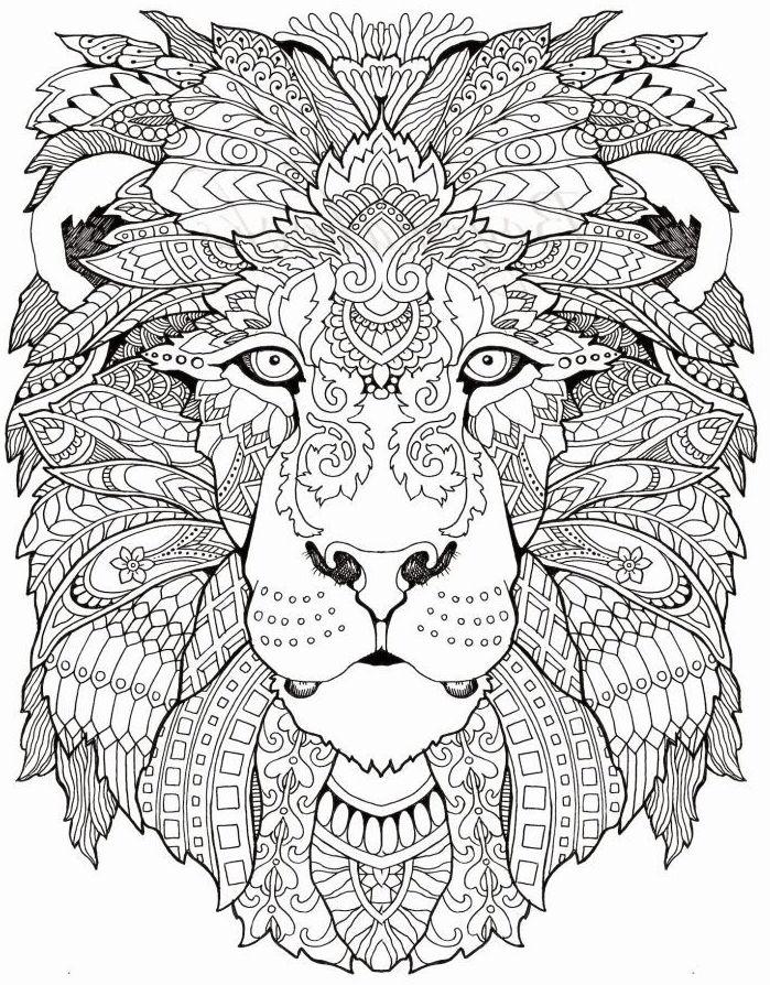 dibujos para colorear dificiles 21 leon