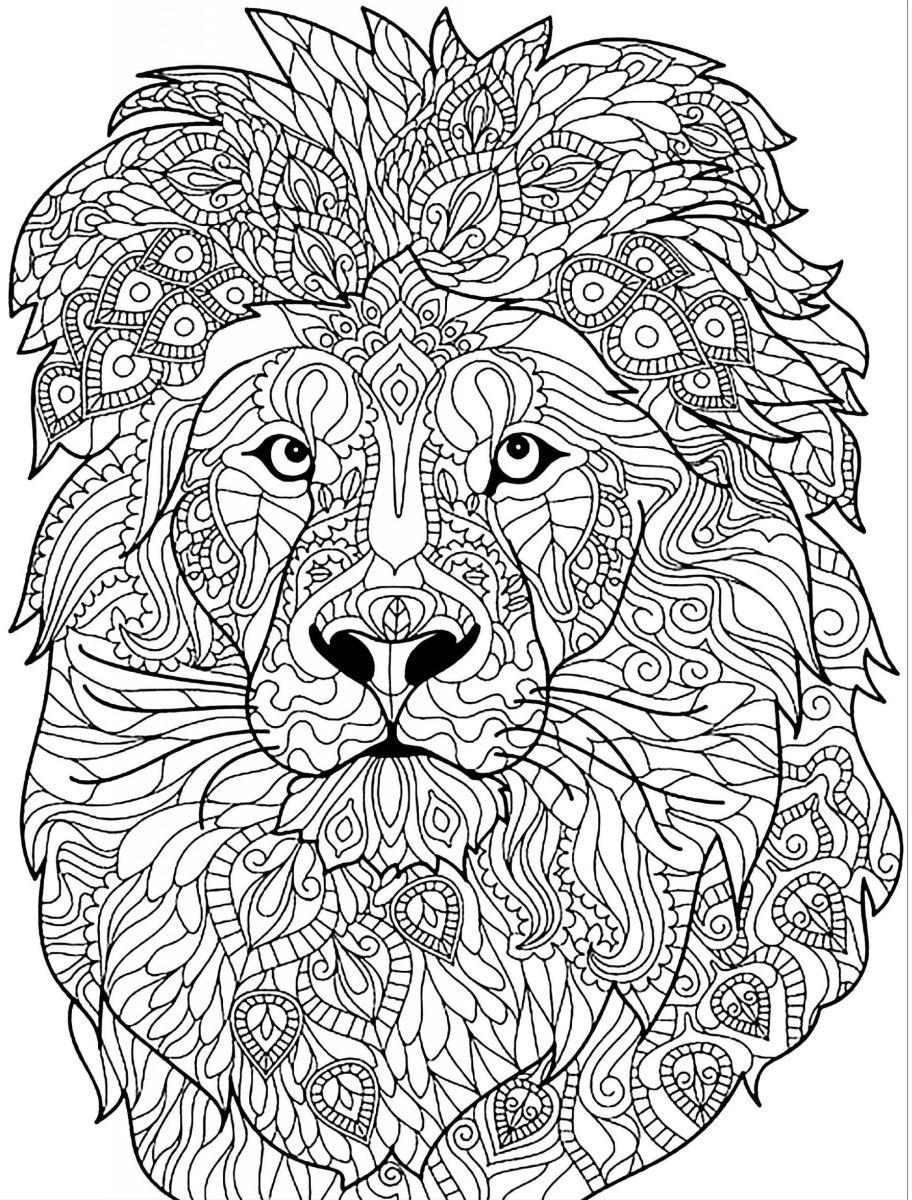 dibujos para colorear dificiles 28 leon
