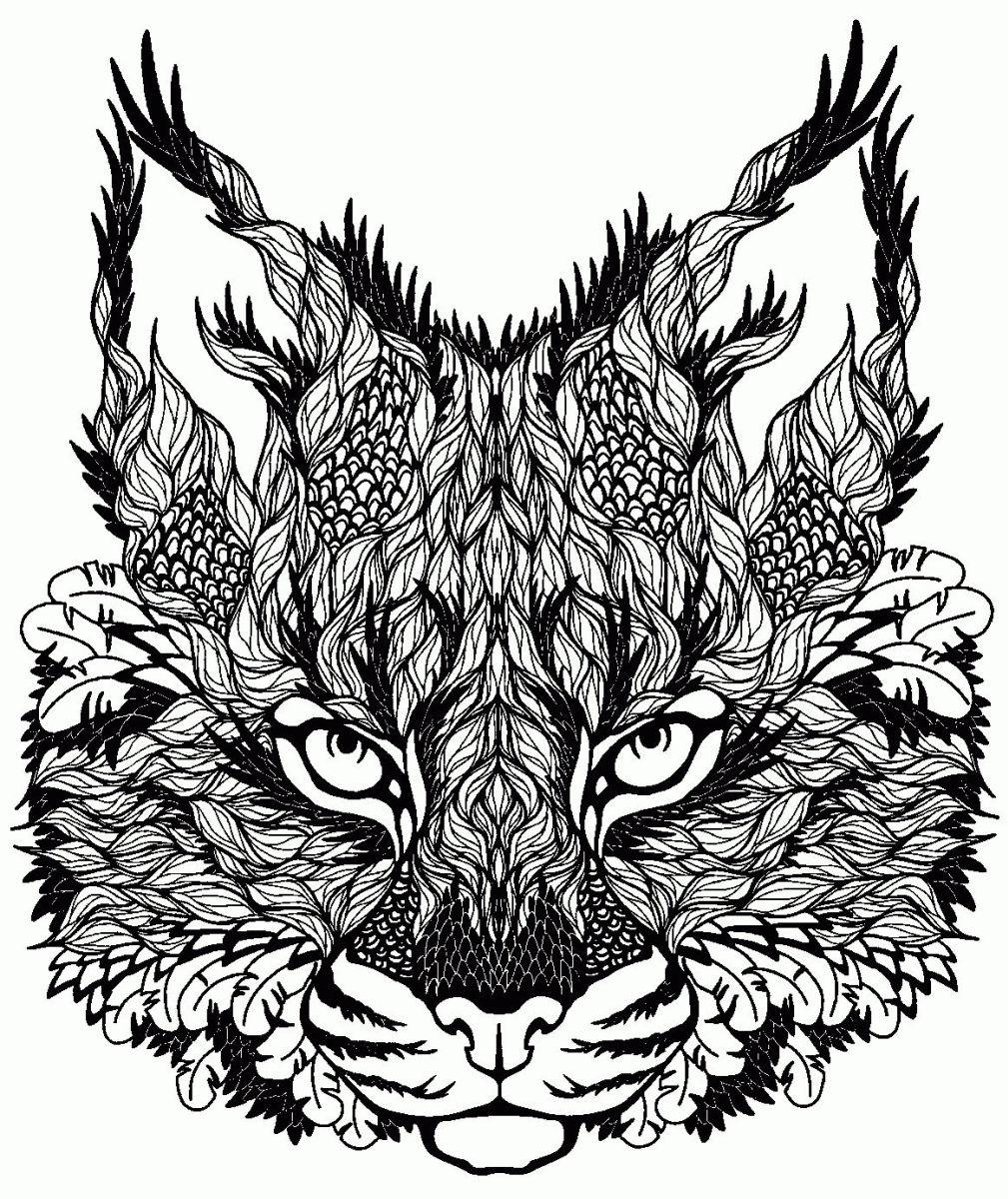 dibujos para colorear dificiles 31 gato montes