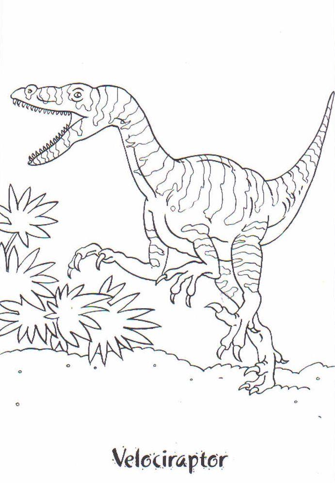 dinosaurios para colorear 16 velociraptor