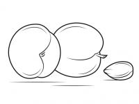 frutas para colorear 2 albaricoque