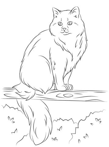 gatos para colorear 10