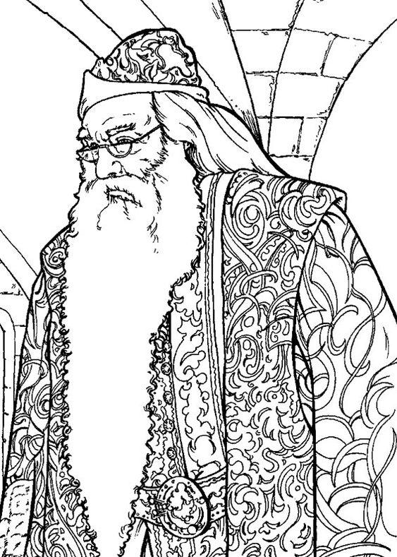 harry potter 12 dumbledore