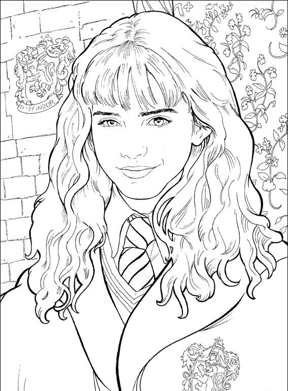 harry potter 40 hermione