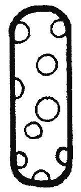 letras para colorear i 2
