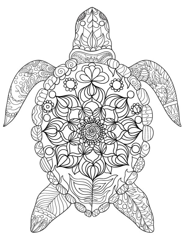 mandalas de animales para colorear 13 tortuga