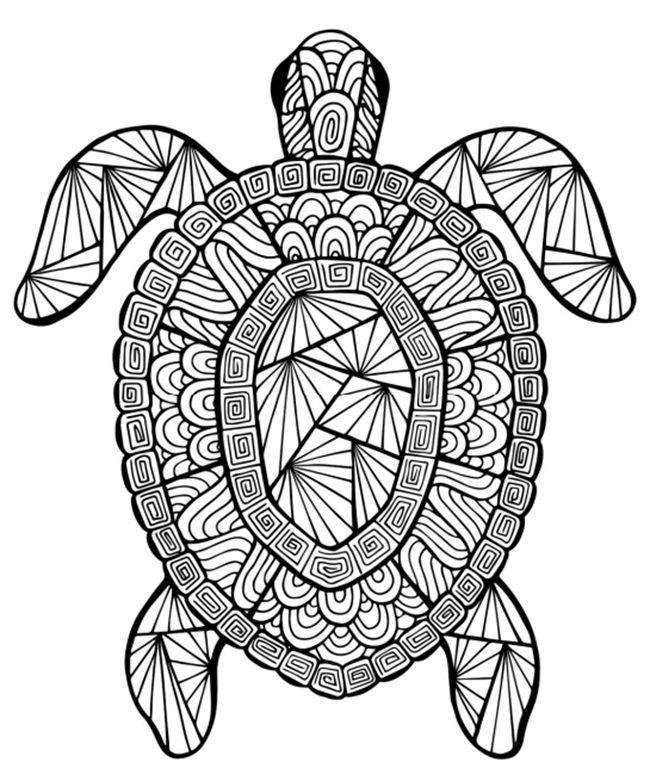 mandalas de animales para colorear 4 tortuga