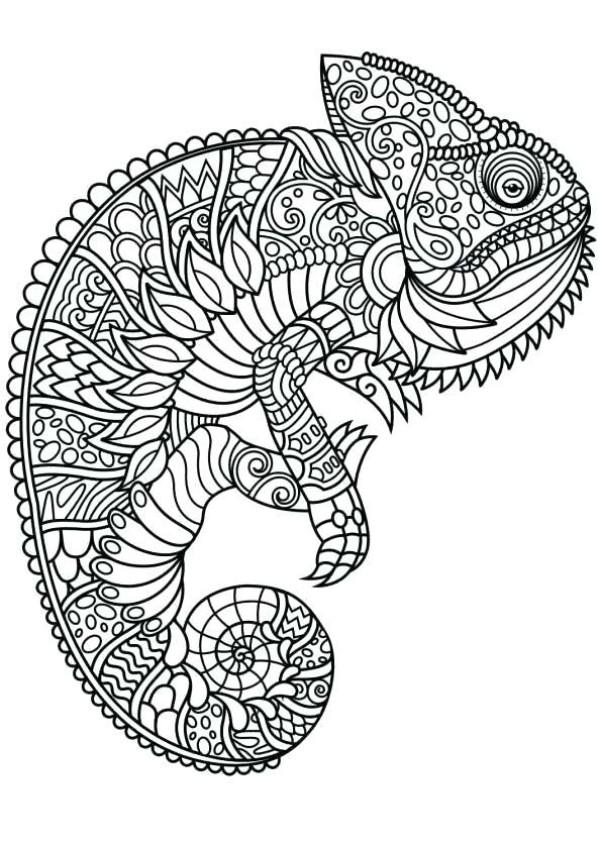 mandalas de animales para colorear 8 iguana