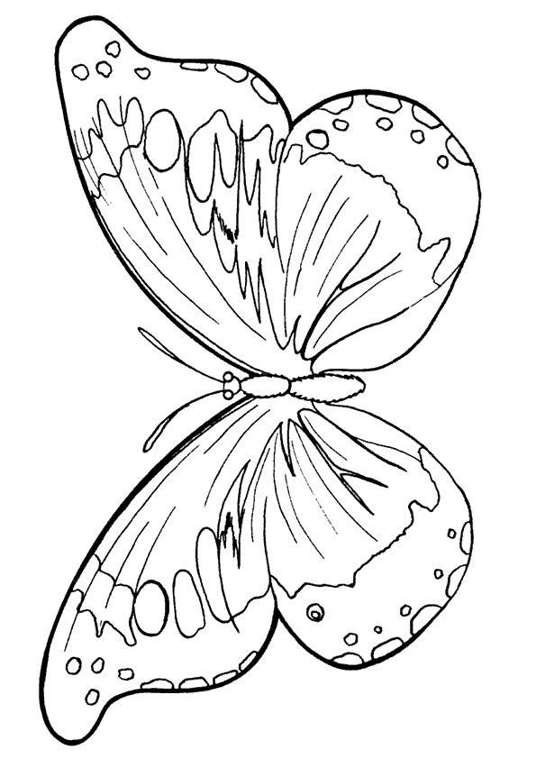 mariposas para colorear 6