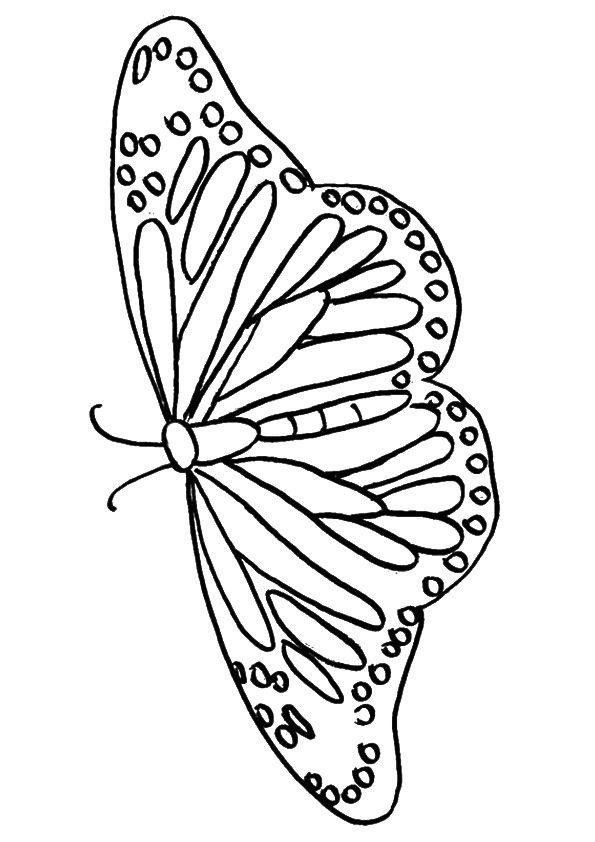 mariposas para colorear 8