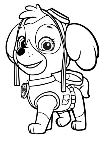 patrulla canina para colorear 12 skye