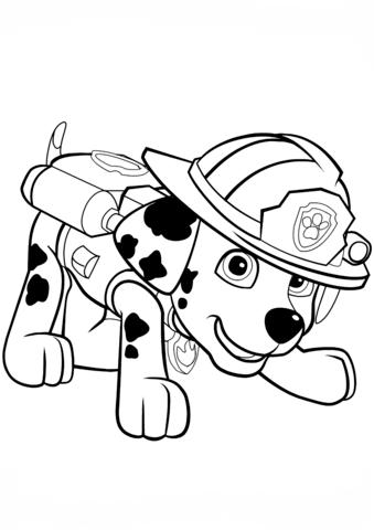patrulla canina para colorear 27 mascota de marshall