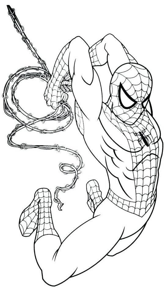 spiderman para colorear 13