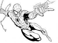 spiderman para colorear 15