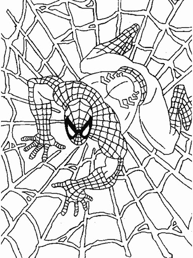 spiderman para colorear 17