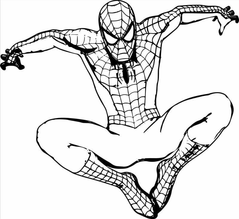 spiderman para colorear 5