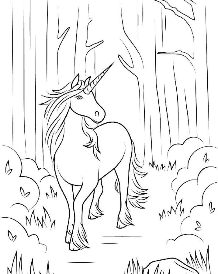 unicornios para colorear 20